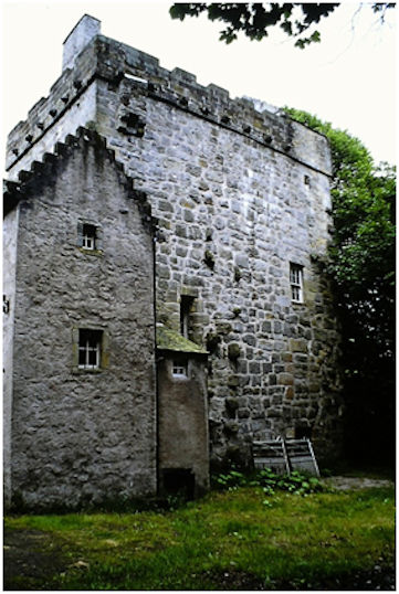 "Illus 12: The Tower at Castlecary Castle looking south-west with the later crow-stepped gable on the left.  The machicolated ""garderobe"" can be seen at the top left of the tower and the tuskers of the missing north wing are conspicuous."