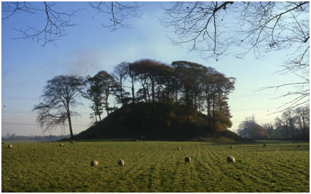 Illus 2: Dunipace Motte looking east with Larbert Parish Church in the distance on the left.  The river lies behind the trees on the right.